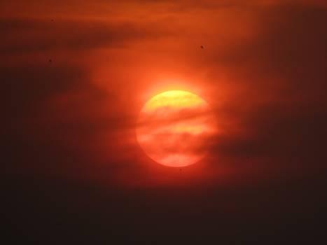 Sunset #95316