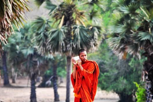 Buddhist Religious Monk #97672