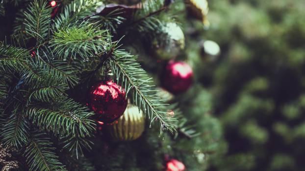Christmas christmas balls christmas decorations christmas tree #97733