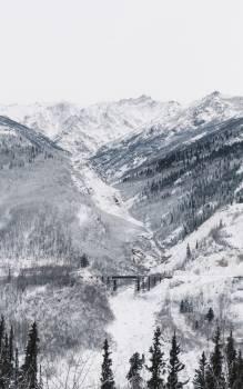 Mountain Alp Glacier #98074