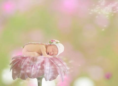 Abstract baby background background image Free Photo