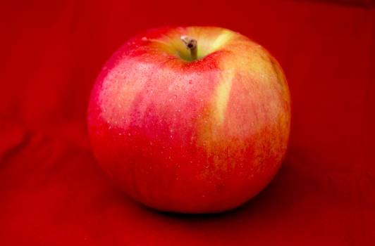 Appetizing apple breakfast closeup Free Photo