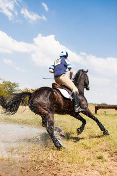 Action cross country effort equestrian Free Photo