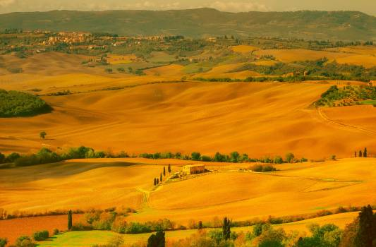 Agriculture beautiful country countryside #99922