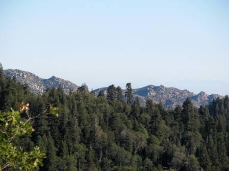Mountain Valley Range #99992