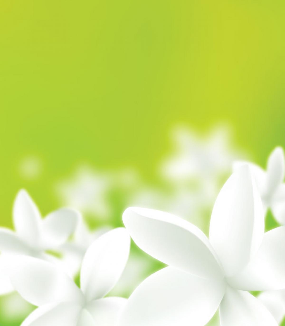 Clover Design Flower #331718
