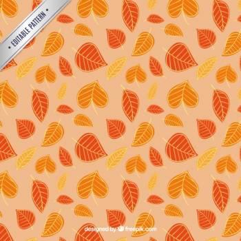 Cotton Pattern Wallpaper Free Photo