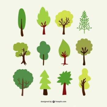 Oak Leaf Icon Free Photo