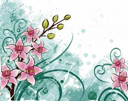 Floral Flower Leaf #331568