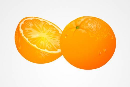 Citrus Fruit Orange #331600