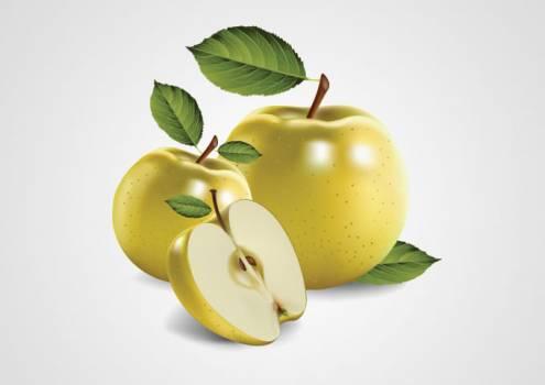 Apple Fruit Delicious Free Photo